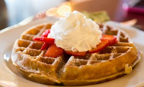 $20 Punch Card for Belgian Waffles & Omelets